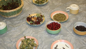 Bowls of multi-coloured herbs and plants displayed on a table